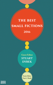 Best Small Fictions 2016 - Grant Faulkner